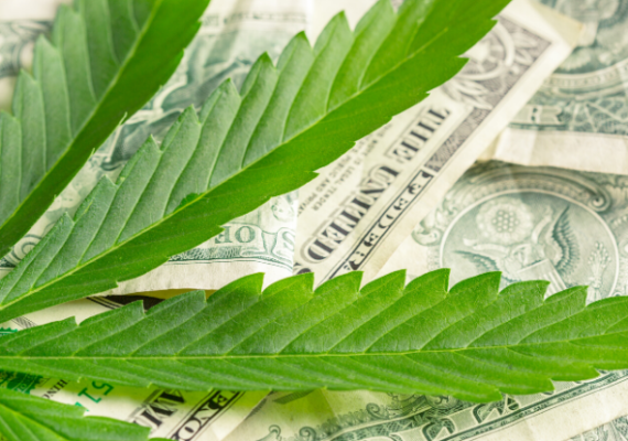 Highest-paid executives and directors among underperforming cannabis stock